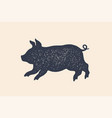 pig piggy concept design of farm animals vector image vector image