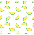seamless pattern with melons perfect vector image vector image
