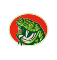 viper snake with fangs vector image vector image