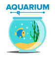 aquarium cartoon fish home glass tank vector image