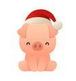cute little pig with christmas santa red cap vector image