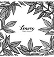 graphic detailed background with peony leaves vector image