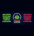 medical cannabis neon sign neon alphabet on a vector image