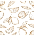 seamless pattern with hand drawn lemons vector image vector image