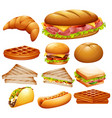 set of various foods vector image vector image