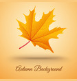 abstract autumn floral template vector image vector image