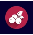 blueberry farm juicy logo symbol vector image