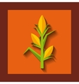 corn cultive isolated icon vector image vector image