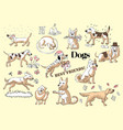 funny dogs sketches vector image vector image