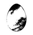 grunge egg background vector image
