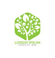 human tree logo design vector image vector image