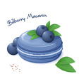 realistic isolated bilberry macaron with fresh vector image vector image