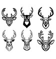 set of deer head on white background design vector image vector image