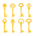 vintage keys yellow old icons ornate heads vector image