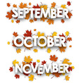 Autumn banners with maple leaves vector image