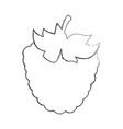 blackberry fresh fruit icon vector image vector image