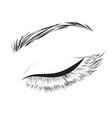 female eye drawing vector image vector image