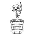 floral tropical cartoon in black and white vector image