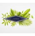 Frame floral frame lime vector image vector image