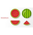 set of watermelons in paper art style vector image