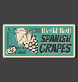 spanish ripe grape fruits vintage card vector image vector image