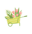 bouquet of pink tulip flowers in wooden cart vector image