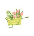 bouquet pink tulip flowers in wooden cart vector image