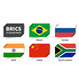 brics association 5 countries inserted vector image