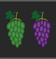 bunch green and red grapes set linear vector image