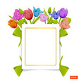 Card template in the frame of multicolored tulips