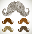 lush mustache groomed in several colors vector image vector image