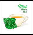 porcelain tea cup with mint fresh tea isolated vector image vector image