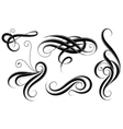 Set of calligrahic design elements vector image