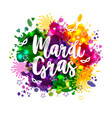 carnival mardi gras on multicolors vector image vector image