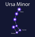 constellation ursa minor with stars pherkad vector image vector image
