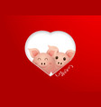 couple cute pig with heart shape frame vector image vector image