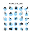 cricket icons set vector image