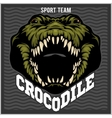 Crocodile mascot for a sport team vector image vector image