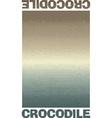 Crocodile skin texture vector image vector image