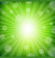 green sunburst poster vector image