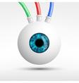 human eye isolated on white background vector image vector image