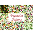 Vegetables patterns set Vegetarian background vector image vector image