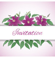 floral background with clematis flowers vector image vector image