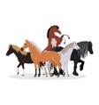 Horse Conceptual Flat Style Web Banner vector image