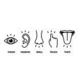 icon set five human senses vision - eye smell vector image