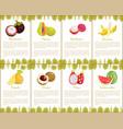 passion fruit and papaya watermelon set vector image vector image