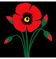 Poppy flower with buds vector image