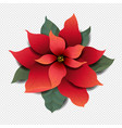 red poinsettia isolated transparent background vector image