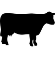 black cow silhouette vector image vector image