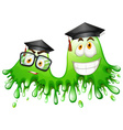 Green splash with graduation caps vector image vector image